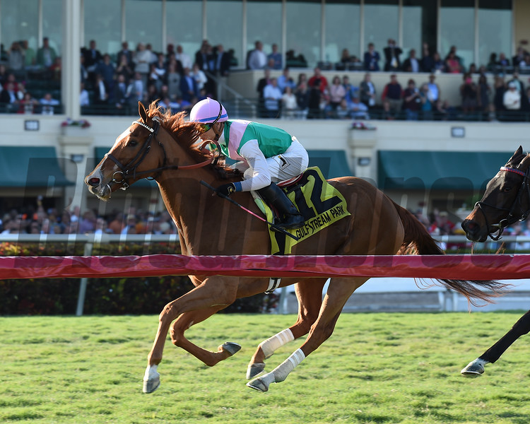 Suffused wins the 2017 La Prevoyante<br /> Coglianese Photos/Lauren King