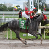 Jaguaryu wins the 2017 Copa Dama del Caribe<br /> Coglianese Photos/Leslie Martin