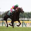 Dashing Blaze with Suguru Hamanaka wins the Epsom Cup (G3) at Tokyo racecourse on June 11 2017