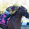 Irish War Cry with jockey Rajiv Maragh wins the 93rd  running of the Grade 2 Wood Memorial  at Aqueduct Race Track Saturday April 8, 2017 in Ozone Park, N.Y.  Photo by Skip Dickstein