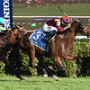 Catholic Boy wins the 2017 With Anticipation Stakes