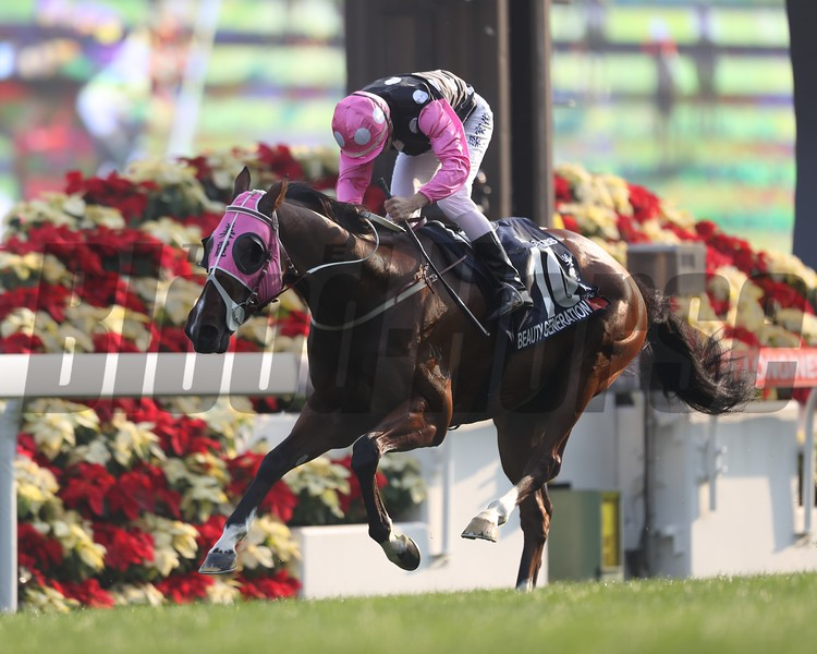 Beauty Generation; Derek Leung; LONGINES Hong Kong Mile; G1; Sha Tin Racecourse; December 12 2017