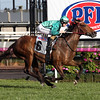 G1 Makybe Diva Stks won by Humidor ridden by Jockey Damien Lane and trained by Darren Weir.