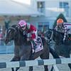 McCraken with Brian j Hernahdez win The Sam F Davis Stakes @ Tampa Bay Down  Feb 11 2017
