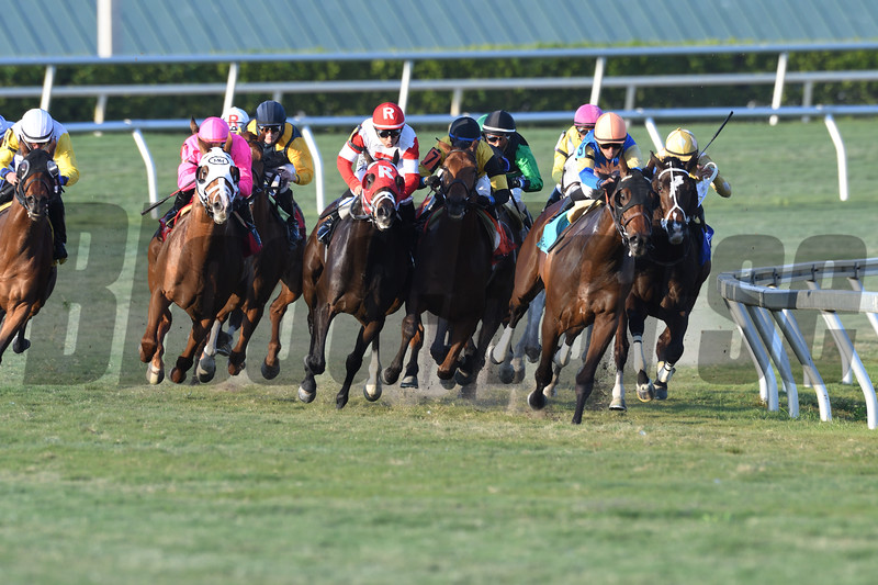 Taghleeb wins the 2017 W. L. McKnight Handicap<br /> Coglianese Photos/Andie Biancone