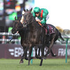Vazirabad wins the 2017 Qatar Prix Du Cadran<br /> Masakazu Takahashi Photo