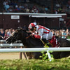 Bricks and Mortar wins the 2017 National Museum of Racing Hall of Fame Stakes<br /> Coglianese Photos/Chelsea Durand