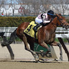 Long Haul Bay wins the 2017 Bay Shore.<br /> Coglianese Photos/Joe Labozzetta