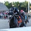 Sharp Azteca wins the 2017 Hardacre Mile Gulfstream Park Handicap<br /> Coglianese Photos/Kenny Martin
