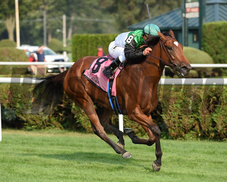 Proctor's Ledge wins the 2017 Lake George Stakes<br /> Coglianese Photos