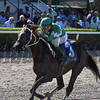Three Rules wins the 2017 Carry Back Stakes<br /> Coglianese Photos/Kenny Martin