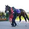 Time Flyer (JPN) wins the 2017 Hopeful Stakes (G1)<br /> Masakazu Takahashi Photo