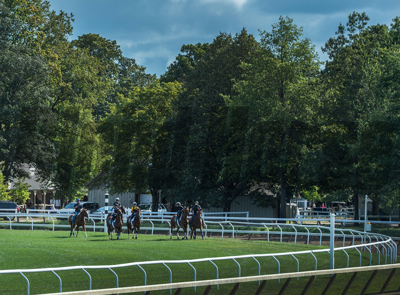 Horses come out to work on the turf course on the Oklahoma Training Center track on a beautiful morning Sunday Aug. 20, 2017 in Saratoga Springs, N.Y. Photo: Skip Dickstein