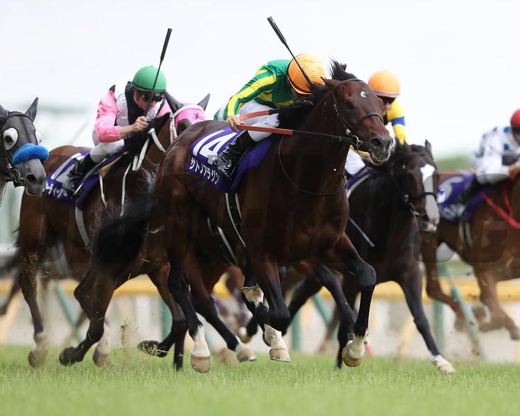 Satono Aladdin wins the Group 1 Yasuda Kinen under jockey Yuga Kawada at Tokyo Racecourse on June 4 2017