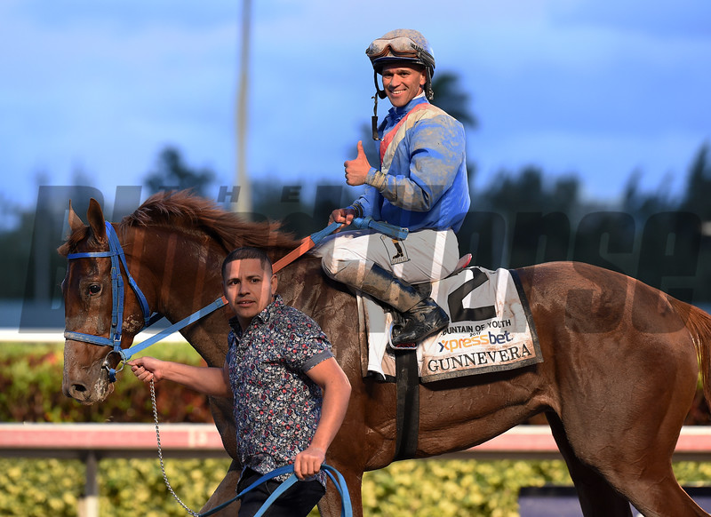Gunnevera wins the 2017 Fountain of Youth<br /> Coglianese Photos/Lauren King