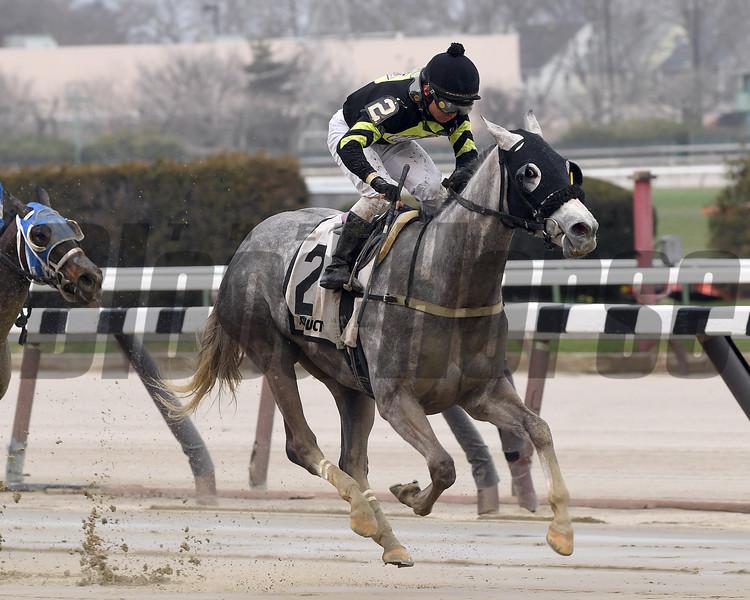 She's So Fine wins the 2017  Karakorum Elektra Stakes<br /> Coglianese Photos/Robert Mauhar
