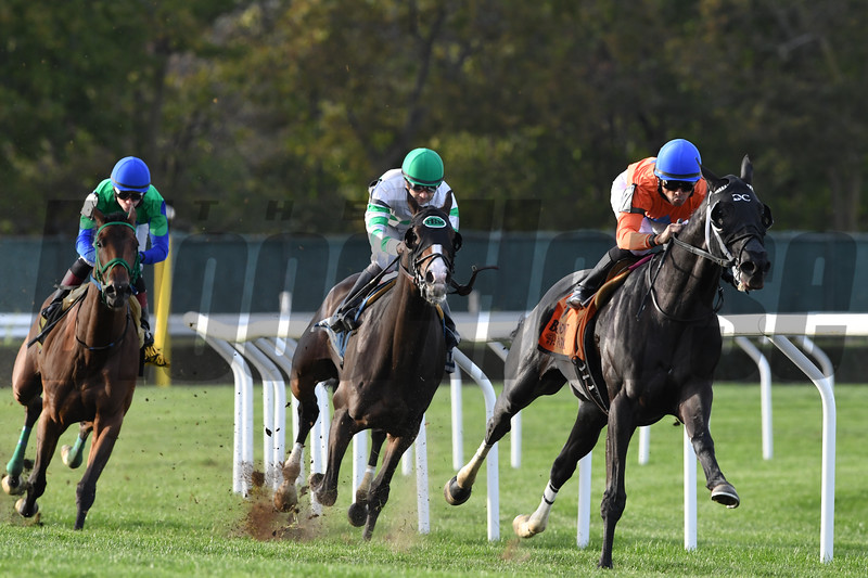 Black Tide wins the 2017 Mohawk<br /> Coglianese Photos/Robert Mauhar