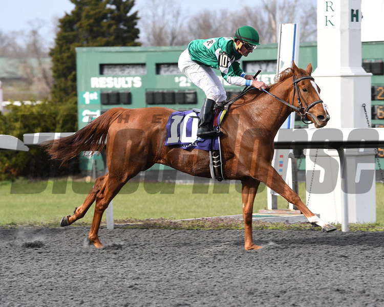 Purely A Dream with Robby Alvarado wins the Bourbonette Oaks (G3) at Turfway Park in Florence, Ky. on March 25, 2017.