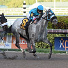 X Y Jet wins the 2017 Mr. Prospector Stakes<br /> Coglianese Photos/Lauren King