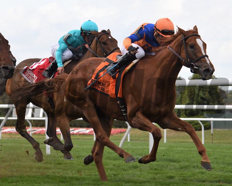 Off Limits wins the 2017 Athenia Stakes<br /> Coglianese Photos/Robert Mauhar