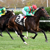 Arles wins the 2017 Long Island Handicap<br /> Coglianese Photos/Rob Mauhar
