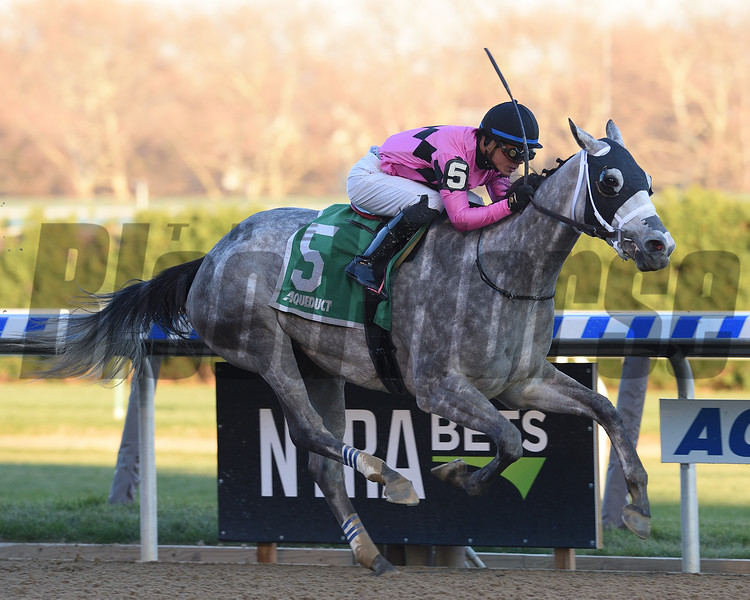 Actress wins the 2017 Comely<br /> Coglianese Photos/Chelsea Durand