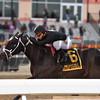 Sharp Azteca wins the 2017 Cigar Mile<br /> Coglianese Photos/Joe Labozzetta