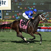Dickinson wins the 2017 Suwannee River Stakes<br /> Coglianese Photos/Leslie Martin