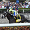 Always Dreaming wins the 2017 Florida Derby<br /> Coglianese Photos/Lauren King