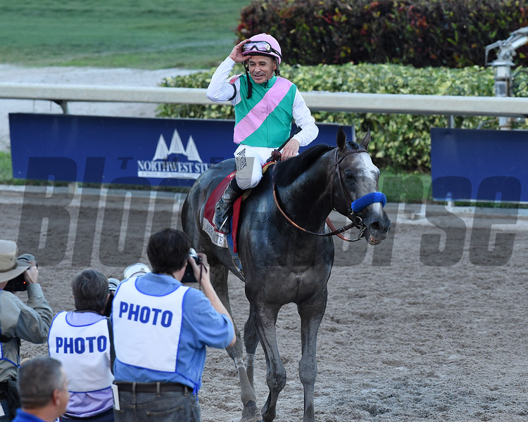 Arrogate wins the 2017 Pegasus World Cup<br /> Coglianese Photos/Leslie Martin