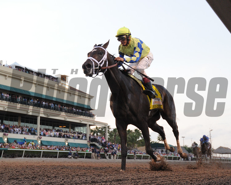 Always Dreaming wins the 2017 Florida Derby<br /> Coglianese Photos