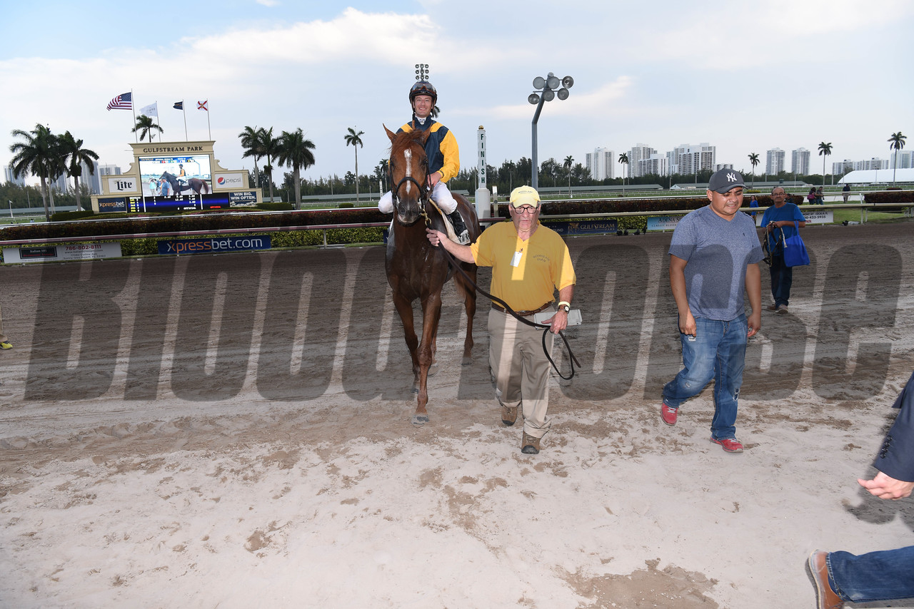 Sadler's Joy wins the Pan American Stakes (G2T) at Gulfstream Park at on April 1, 2017