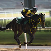 Dubai World Cup -Morning works 3/22/17, photo by Mathea Kelley/Dubai Racing Club<br /> Sounds of Earth, Dubai Sheema Classic