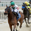 Do Share wins the 2017 Stud Muffin Stakes<br /> Coglianese Photos/Joe Labozzetta