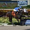 Go Astray wins the 2017 Florida Stallion Series - the Desert Vixen<br /> Coglianese Photos/Leslie Martin