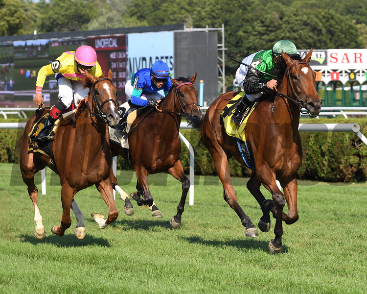 Proctor's Ledge wins the 2017 Lake Placid<br /> Coglianese Photos/Viola Jasko