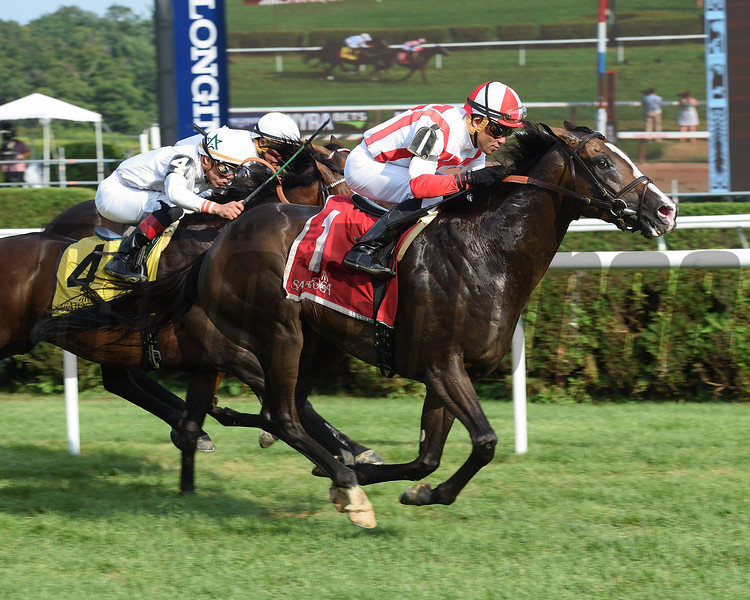 Bricks and Mortar wins the 2017 National Museum of Racing Hall of Fame Stakes<br /> Coglianese Photos/Jamie Coulter