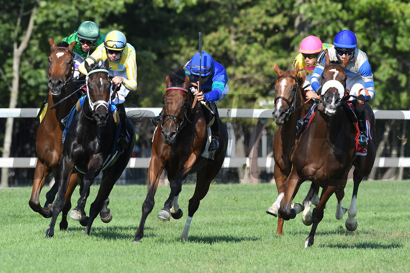 Proctor's Ledge wins the 2017 Lake Placid<br /> Coglianese Photos