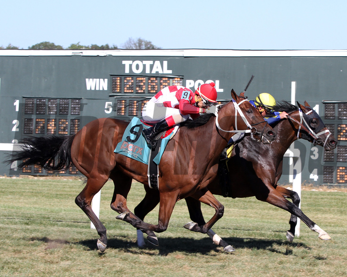 Firsthand Report Javier Castellano Alphabet Soup Stakes Parx Chad B. Harmon