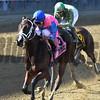 Berning Rose wins the 2017 Maid of the Mist Stakes<br /> Coglianese Photos/Joe Labozzetta