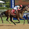 Hard Study wins the 2017 Birdstone Stakes<br /> Coglianese Photos