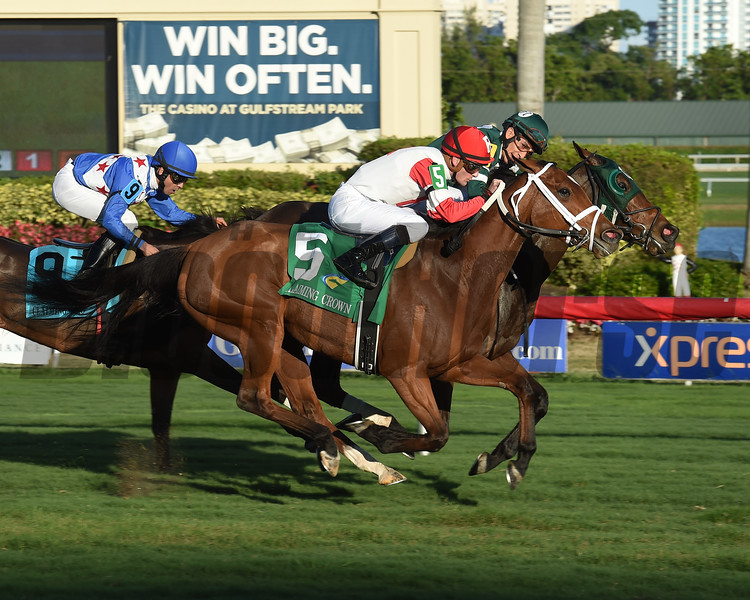 Martini Glass wins the 2017 Claiming Crown Tiara<br /> Coglianese Photos/Leslie Martin