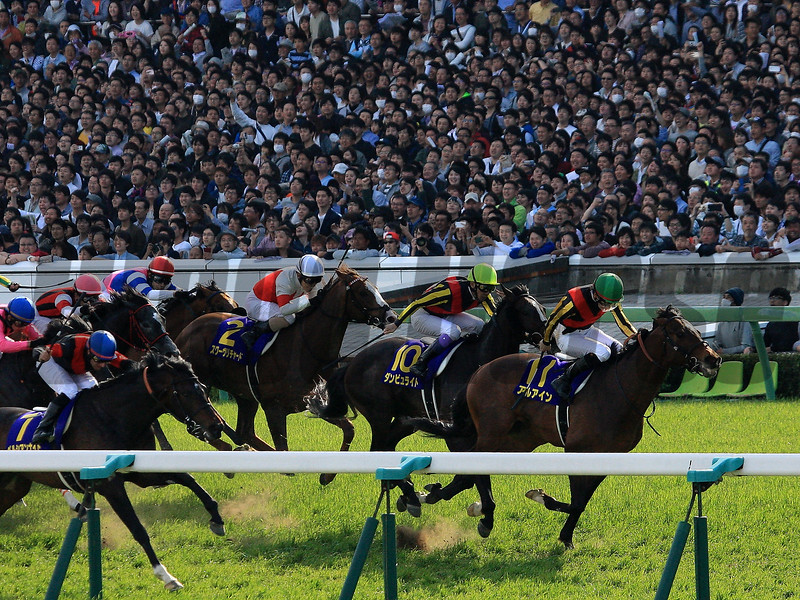 Al Ain wins the 2017 Satsuki Sho<br /> Naoji Inada Photo