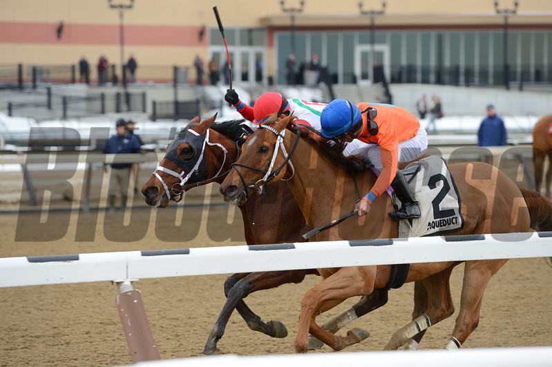 Send It In wins the 2017 Haynesfield Stakes<br /> Coglianese Photos/Joe Labozzetta
