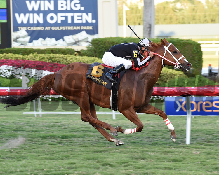 Pay Any Price wins the 2017 Silks Run Stakes<br /> Coglianese Photos/Leslie Martin