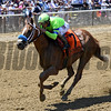 War Story wins the 2017 Brooklyn Invitational<br /> Coglianese Photos/Chelsea Durand