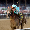 Twisted Tom wins the 2017 Albany Stakes<br /> Coglianese Photos/Chelsea Durand