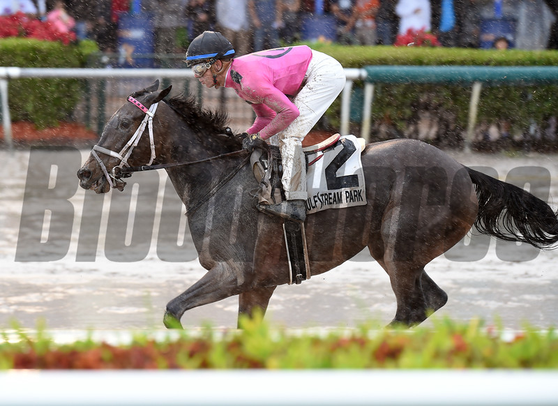 Miss Mo Mentum wins the 2017 Hut Hut Stakes<br /> Coglianese Photos/Lauren King