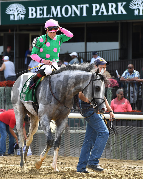 Disco Partner wins the 2017 Belmont Turf Sprint Invitational<br /> Coglianese Photos/Joe Labozzetta