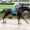 Limousine Liberal wins the 2017 Churchill Downs Stakes<br /> Dave Harmon Photo
